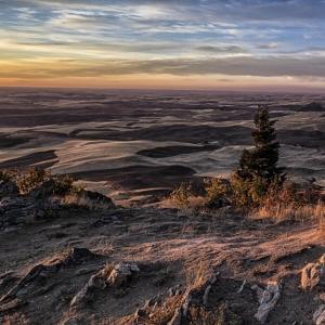 Steptoe Summit View