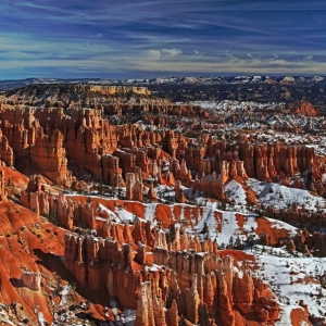 Bryce winter