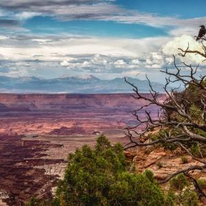 Posing Raven Canyon