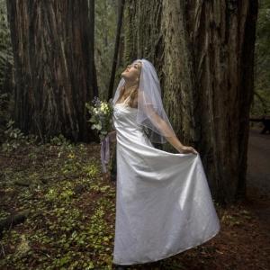 Nicole wedding redwoods small