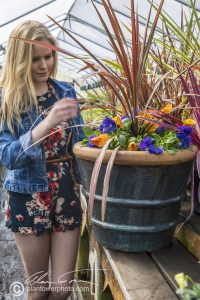 Blonde model in short skirt looking at a pottery container planted with flowers and a cordyline.